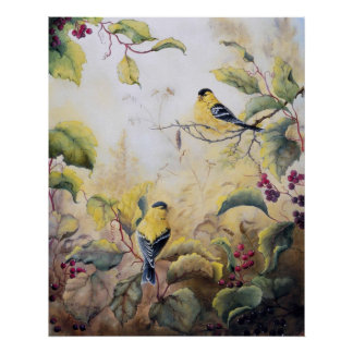 """Gold Finches"" UV Canvas Printes Posters"