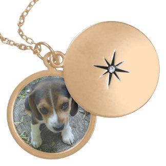 Gold finish Puppy Locket