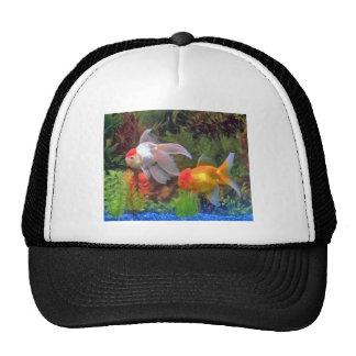 Gold Fish Hat