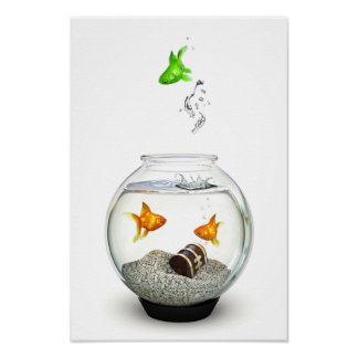 Gold Fish Outsider Poster