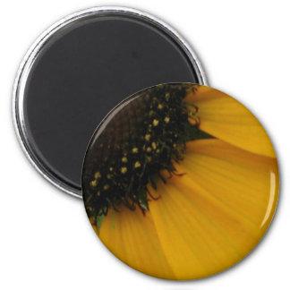 Gold Gerbera Daisy 053 Fridge Magnets