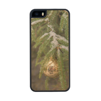 Gold Glass Christmas Ornament On Evergreen Tree Wood Phone Case For iPhone SE/5/5s