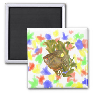 Gold Gourami Freshwater Fish With Green 2 Inch Square Magnet