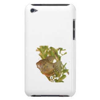 Gold Gourami Freshwater Fish With Green iPod Touch Cover