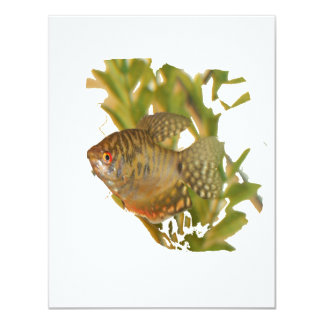 Gold Gourami Freshwater Fish With Green Personalized Invitation