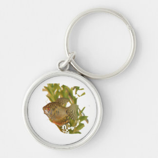 Gold Gourami Freshwater Fish With Green Key Chain