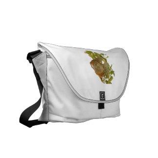 Gold Gourami Freshwater Fish With Green Messenger Bag