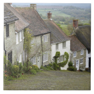 Gold Hill, Shaftesbury, Dorset, England, United Large Square Tile