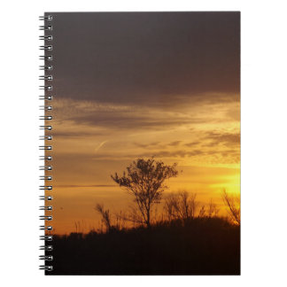 Gold In The Sky Notebook