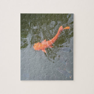 gold koi in pond with cichlids fish image picture jigsaw puzzle