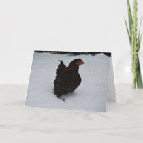 Gold laced Wyandotte trekking through Snow! Holiday Card