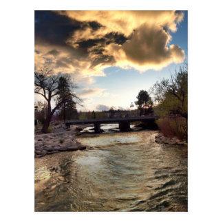 Gold Light on Truckee River Postcard