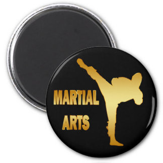 GOLD MARTIAL ARTS FRIDGE MAGNETS