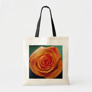 Gold Medal Grandiflora Rose 'Aroyqueli' White flow Bag