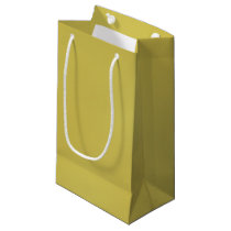 Gold Metal-Colored Gift Bag