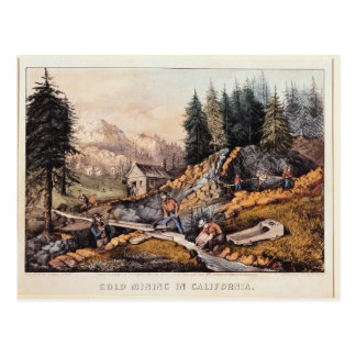 Gold Mining in California Postcard
