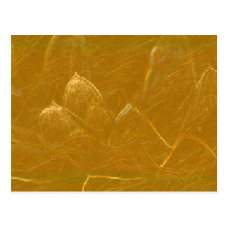 Gold n Copper Sheet :  Lotus Engraved Design Postcard
