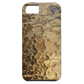 Gold Nugget iPhone 5 Cover