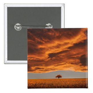 Gold over the sad tree cloud 2 inch square button