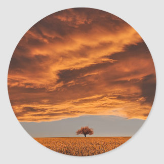 Gold over the sad tree cloud classic round sticker