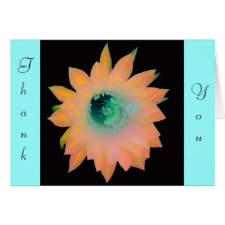 Gold Peach Aqua Floral Bloom Note Card