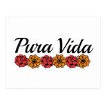 Gold & Red Marigold Pura Vida Post Cards