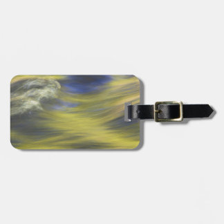 Gold Reflections on Blue Water Bag Tag