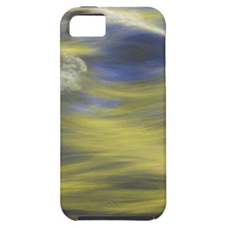 Gold Reflections on Blue Water iPhone SE/5/5s Case