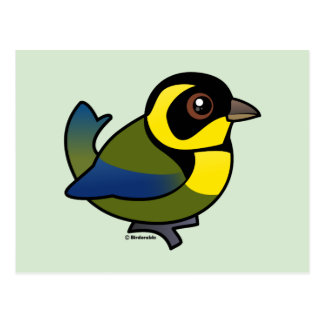 Gold-ringed Tanager Postcard