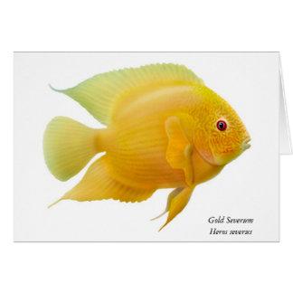 Gold Severum Fish Greeting Card