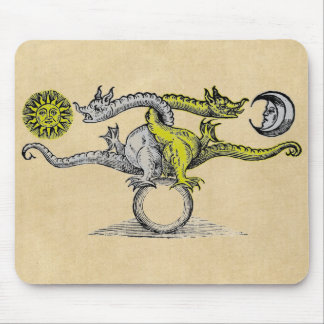 Gold & Silver Dragons Mouse Pad