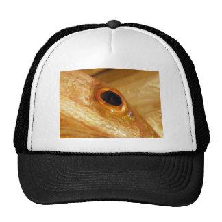Gold Snapper Eye Trucker Hats