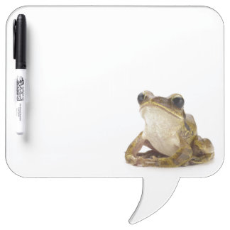 Gold tree frog Dry-Erase board