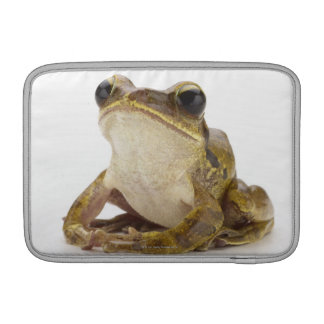 Gold tree frog sleeves for MacBook air
