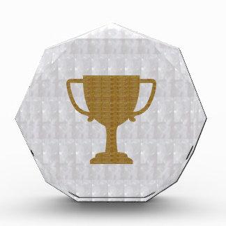 GOLD Trophy Crystal White Background NVN287 Winner Acrylic Award