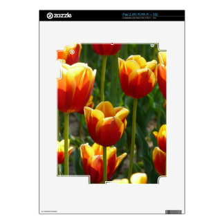 gold tulips decal for the iPad 2