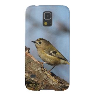 Goldcrest Carcasa Para Galaxy S5