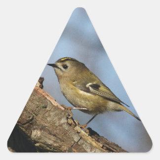 Goldcrest Triangle Sticker
