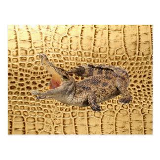 Golden Alligator Tooled Leather Postcard