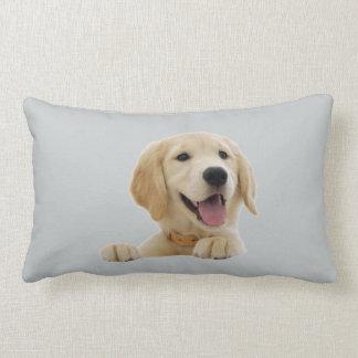 golden almofada lumbar pillow