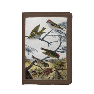 Golden and Ruby-crowned Kinglets Tri-fold Wallets
