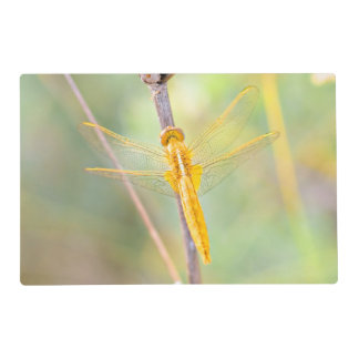 Golden and yellow dragonfly placemat