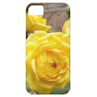 golden angel roses iPhone 5 case