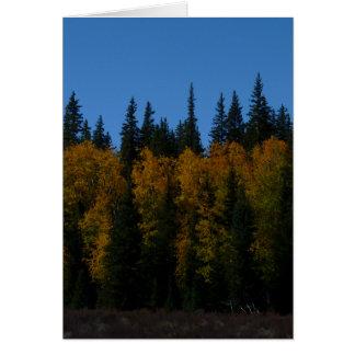 Golden Aspen Card