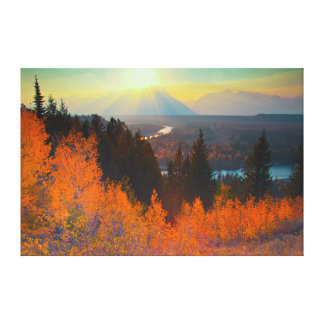 Golden Aspens Above Snake River At Sunset Gallery Wrapped Canvas