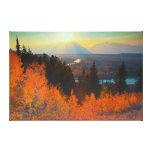 Golden Aspens Above Snake River At Sunset Canvas Print