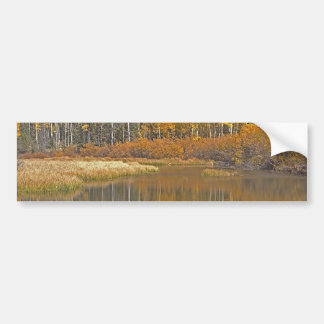 Golden Aspens Reflecting in Beaver Pond Bumper Sticker