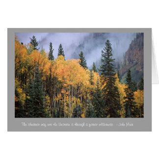 Golden Aspens with John Muir Quote Card