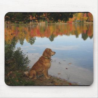 Golden Autumn at the Lake Mouse Mats