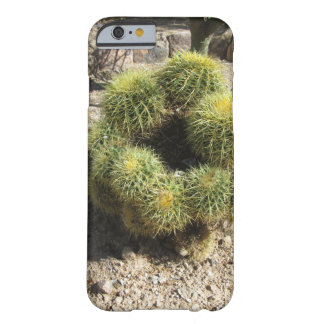 Golden Barrel Cactus Barely There iPhone 6 Case